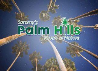 Sammy's Palm Hills Main